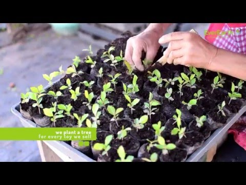 EverEarth® - Plant-a-tree project ENGLISH